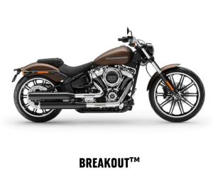 Breakout™